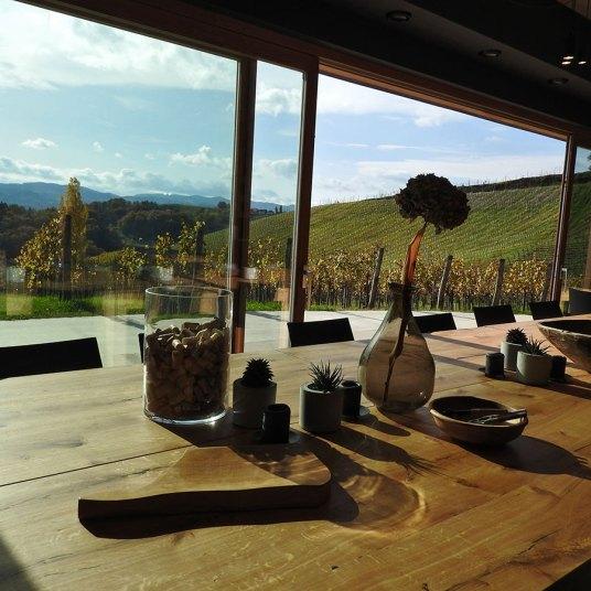 pogled iz Ducal vinarije