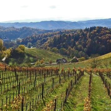 pogled na Sloveniju