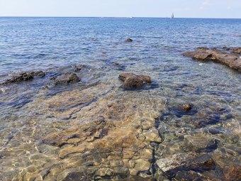 obala