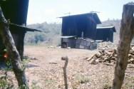 20110206-1988_copan_0003-2-