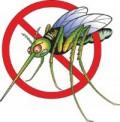 сузбијање комараца