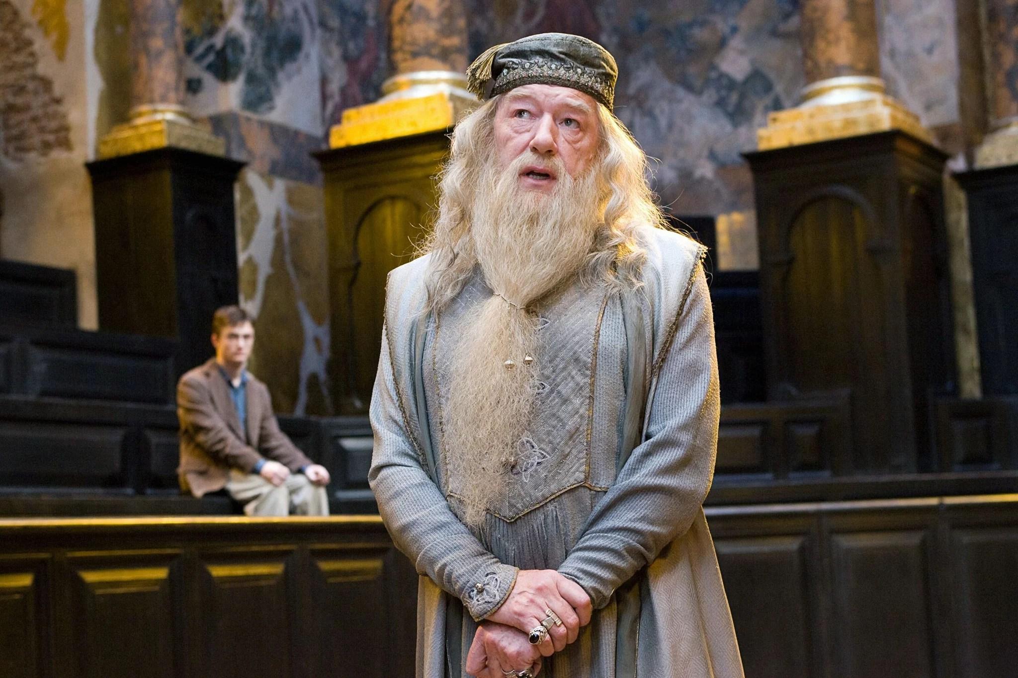 How Does Albus Dumbledore Know Newt Scamander
