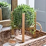 Embossed Planter With Stand