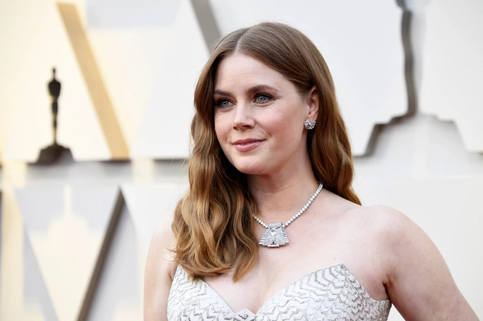HOLLYWOOD, CALIFORNIA - FEBRUARY 24: Amy Adams attends the 91st Annual Academy Awards at Hollywood and Highland on February 24, 2019 in Hollywood, California. (Photo by Frazer Harrison/Getty Images)