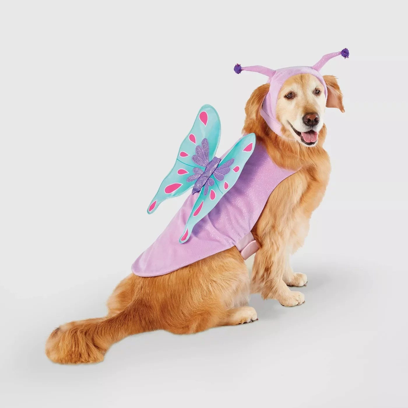 Our pet costumes will make them look adorable right along with you whether that's ghostbusters, chucky or disney. Pet Halloween Costumes For Cats And Dogs At Target 2020 Popsugar Pets