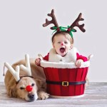 Adorable Baby And Puppy Christmas Picture Ideas Popsugar Family
