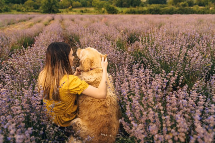 Photo of a young woman and her dog enjoying the lavender field on a beautiful sunny day; beautiful and peaceful weekend getaway, far from the hustle of the city.
