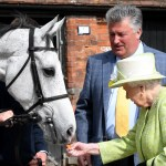 Queen Elizabeth Ii Feeds A Horse At Manor Farm Stables In 2019 Queen Elizabeth Ii Pictures Over The Years Popsugar Celebrity Australia Photo 93