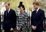 William, Kate e famiglie dellunire di Harry delle vittime di attacco di terrore ad una funzione religiosa
