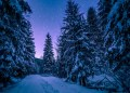 16 Photos That Prove Winter Is Insanely Beautiful