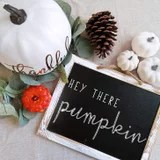 Cozy Up This Fall With These 50 Charming Decor Finds, All From Amazon