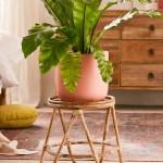 Best Rattan Indoor Furniture Popsugar Home