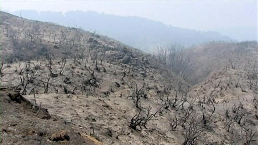 Image result for scorched earth