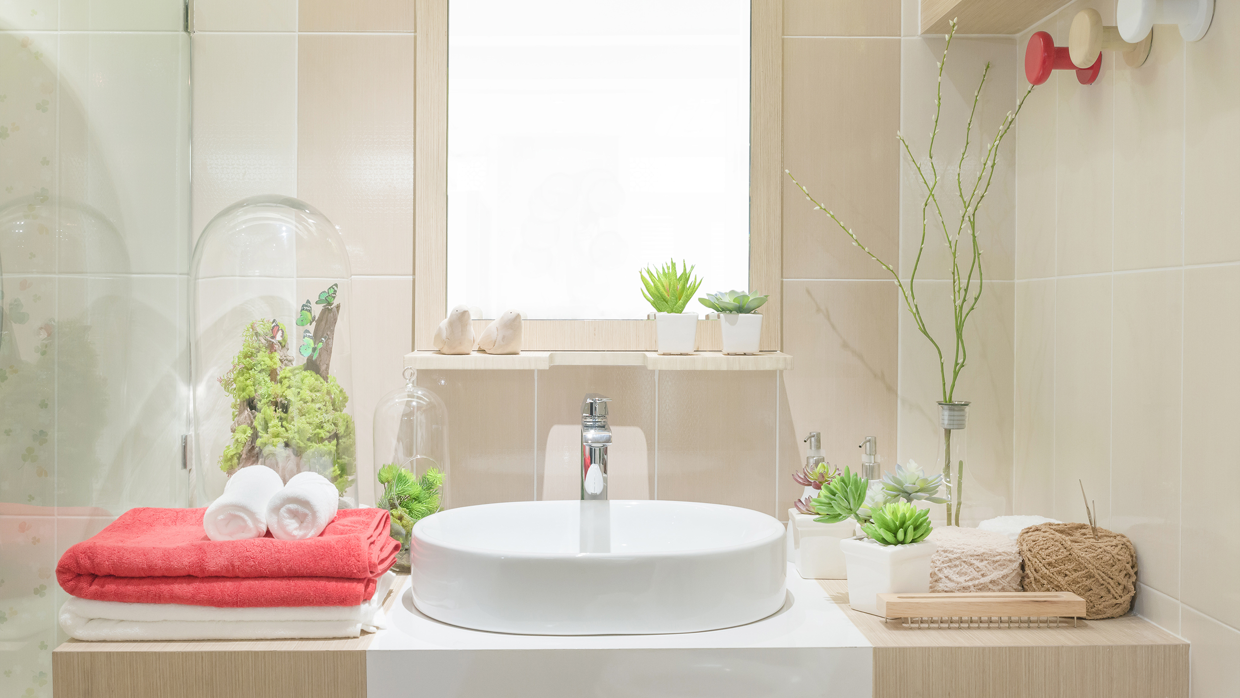 3 Benefits Of Bathroom And Shower Plants