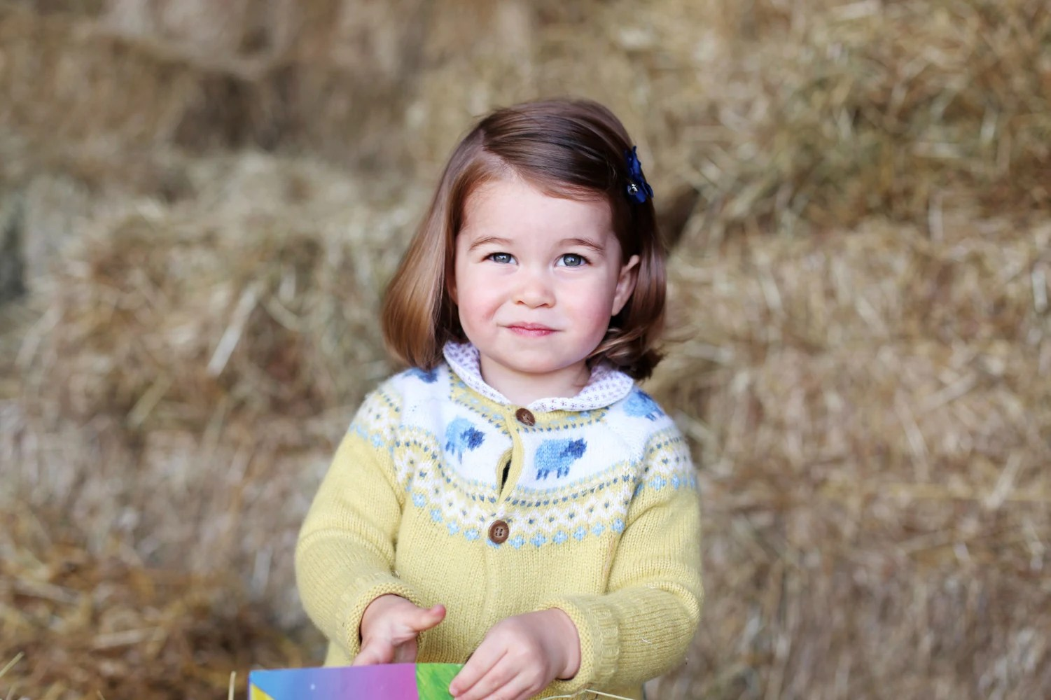 Adorable New Photo Of Princess Charlotte Proves She's Growing Up Quickly