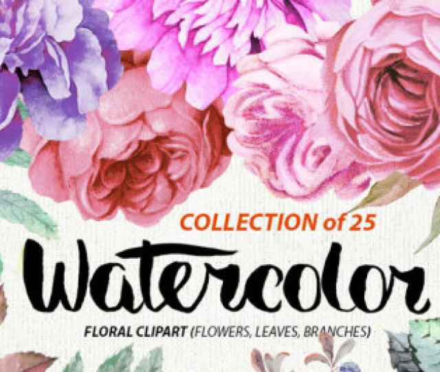 Watercolor Burgundy Floral Elements Peonies And Roses Boho Style Wedding Invitations Clipart Purple Flowers Individual Png Files