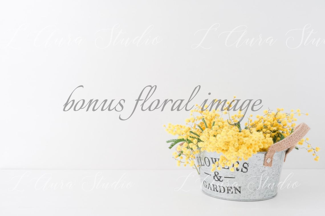 Download Photo Mockup Psd Yellowimages