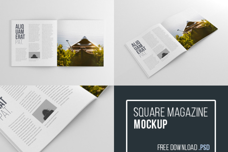 Download Magazine Cover Mockup Free Psd Yellowimages