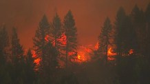 500,000 people forced to evacuate due to Oregon wildfires