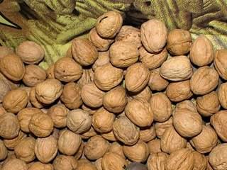 walnuts_20120803154115_JPG