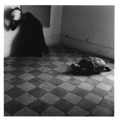 Yet another leaden sky, Rome, Italy, by Francesca Woodman