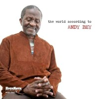 The_World_According_to_Andy_Bey.jpg