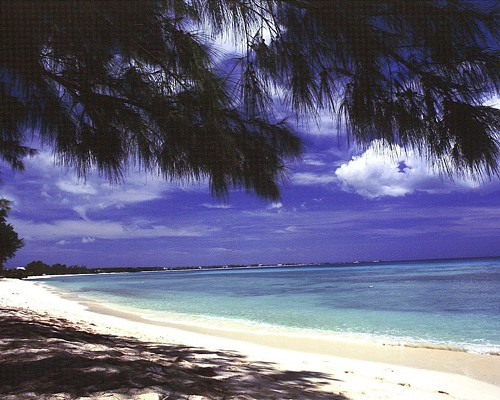 The climate in the Cayman Islands is pleasant, especially for business
