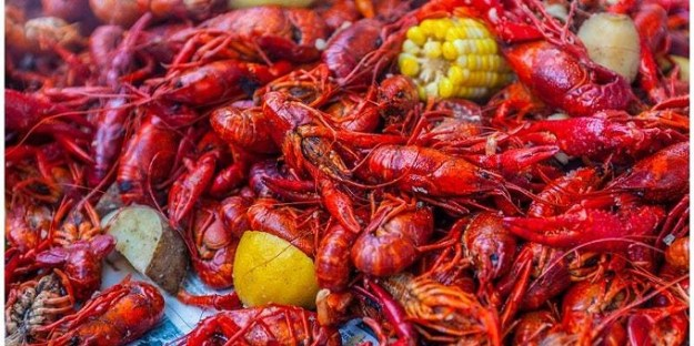 COURTESY OF SENTINEL PEAK CRAWFISH BOIL! FACEBOOK EVENT PAGE