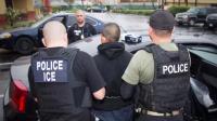 https://www.foxnews.com/politics/new-litmus-test-dems-demand-elimination-of-ice-amid-immigration-furor