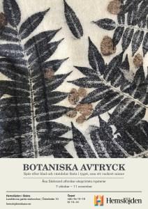 Botaniska avtyck