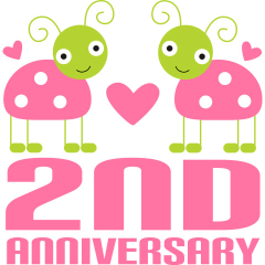 2nd Anniversary Ladybug Gift Ideas Still In Love