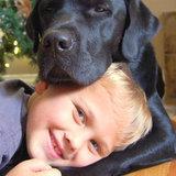 """Jedi il cane aiuta il suo diabete """"matrice"""" di 7 anni di tipo 1 di lotta di Luke"""