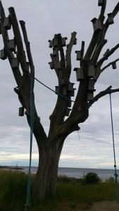 Ett annat träd
