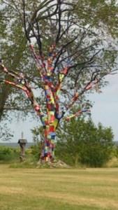 Ett träd