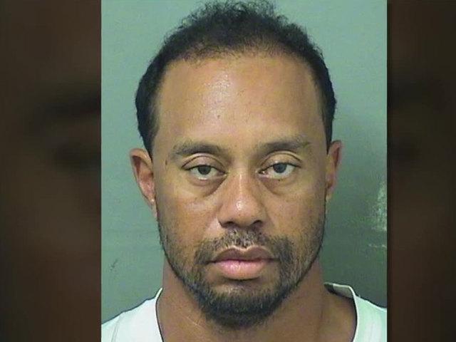 Image result for bad images of tiger woods