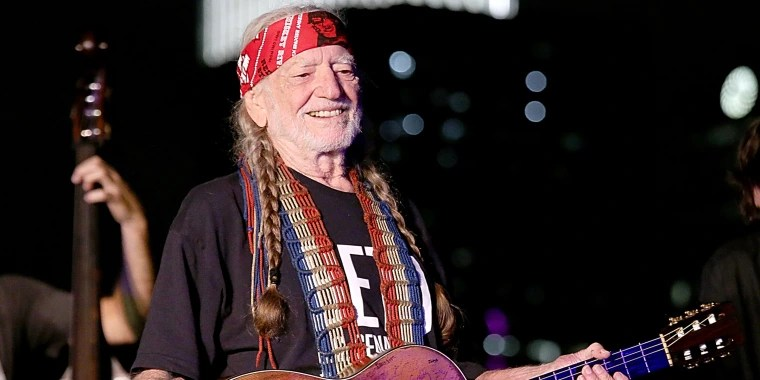 Image result for willie nelson stardust blue skies