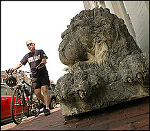 Ryan Lielgus of Bethesda passes one of the two lion statues outside Gore Dean on M Street in Georgetown. The lions once resided in Connecticut.