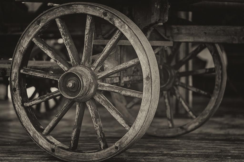 Hjul, … (32/365)