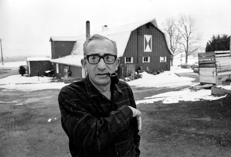 Image result for max yasgur's farm images