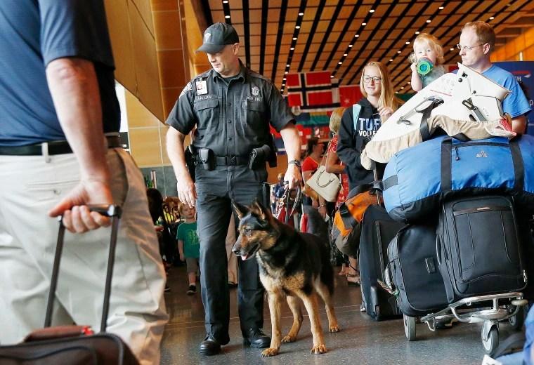 Logan Airport Explosive Detection Dogs