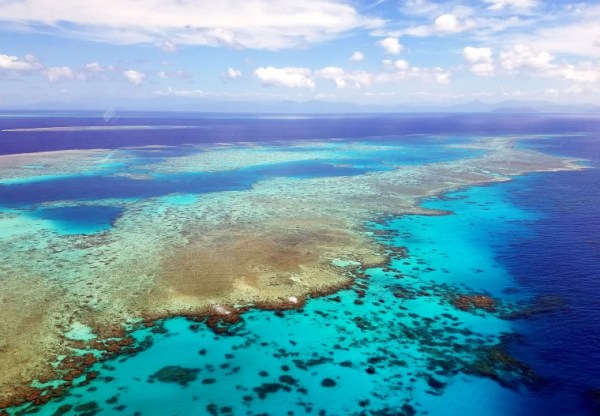 Decimation of reefs would send flood, storm damage costs ...
