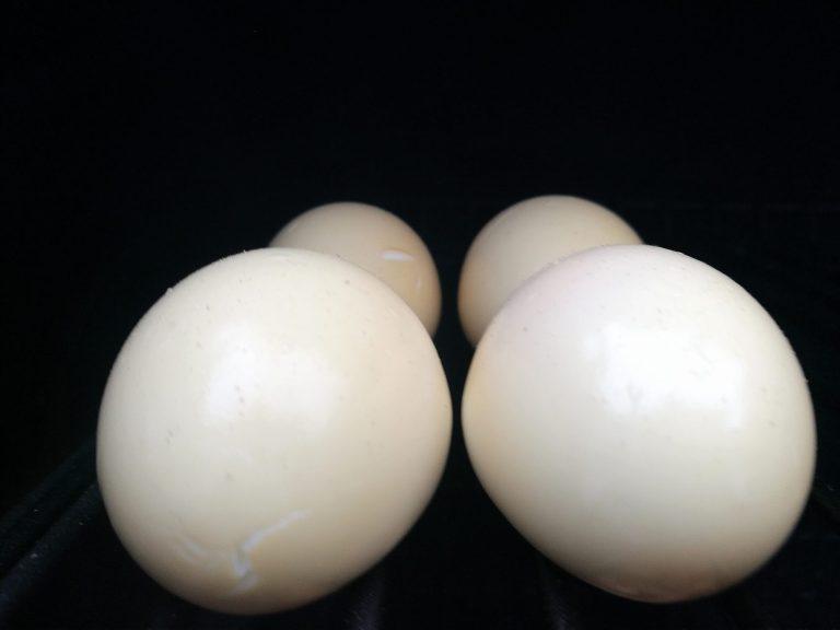 Røkte devilled eggs