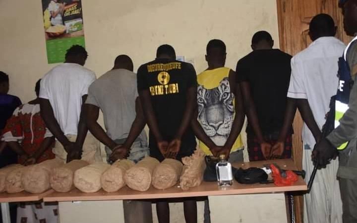 Opération de sécurisation : 150 personnes interpellées et 12 kg de chanvre indien saisis par la légion de gendarmerie Ouest à Keur Massar