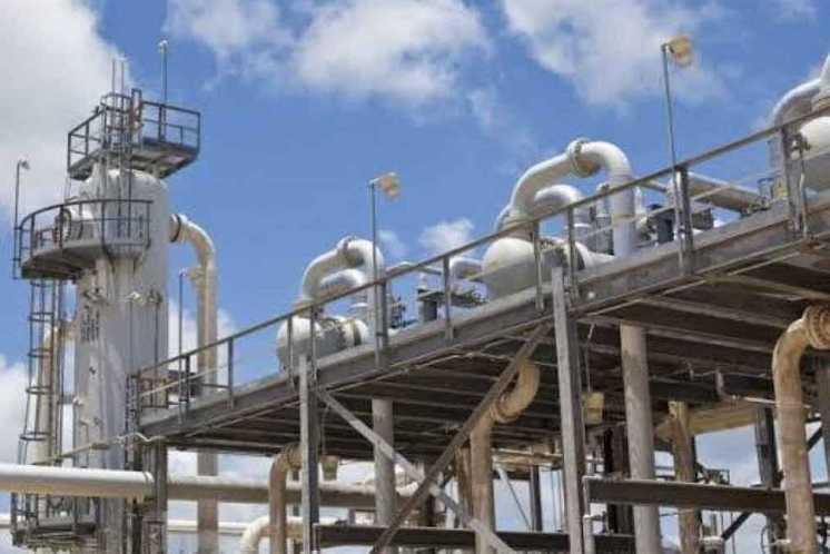 تنسيق مدارس البترول بعد الإعدادية 2021.. تعرف على المصاريف والشروط والأوراق  المطلوبة | المصري اليوم