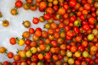 Media Bakery: PUR0105569 Cherry tomatoes, high angle view