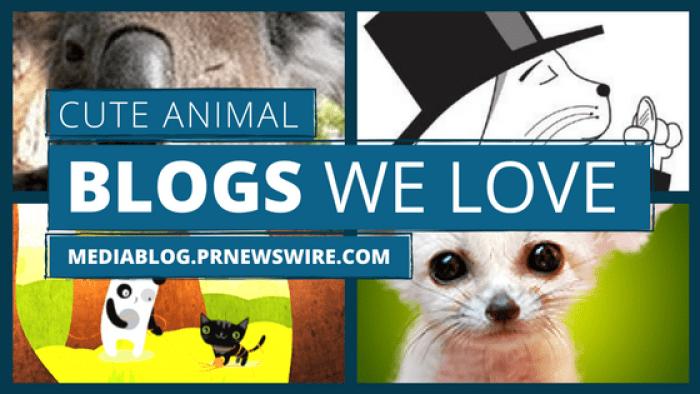 cute animal blogs