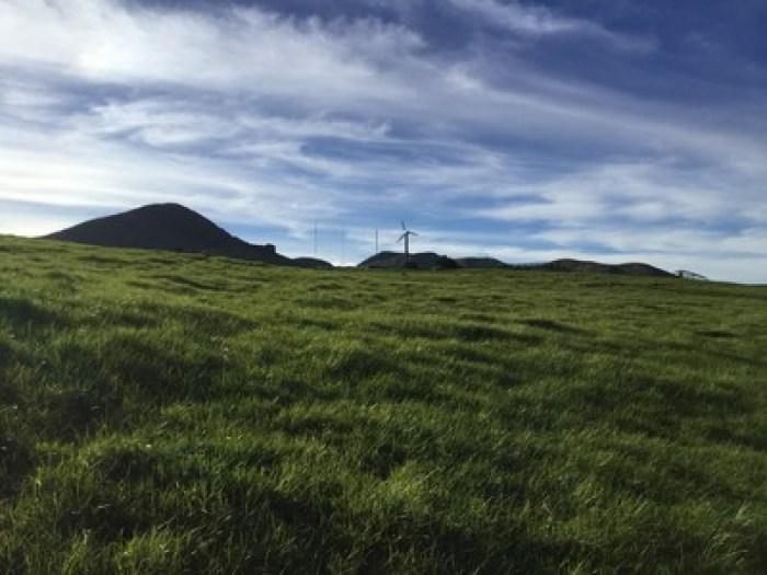 Green hills in Kohala, Hawaii