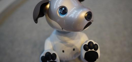 Sony blue-eyed aibo