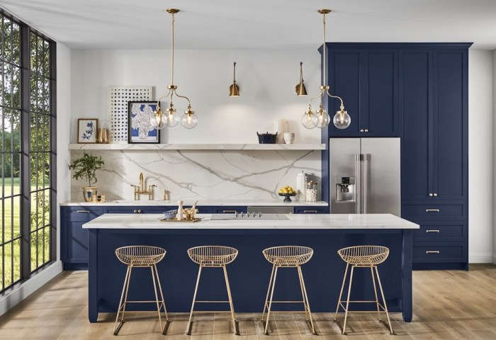 Sherwin Williams Color of the Year Naval SW 6244