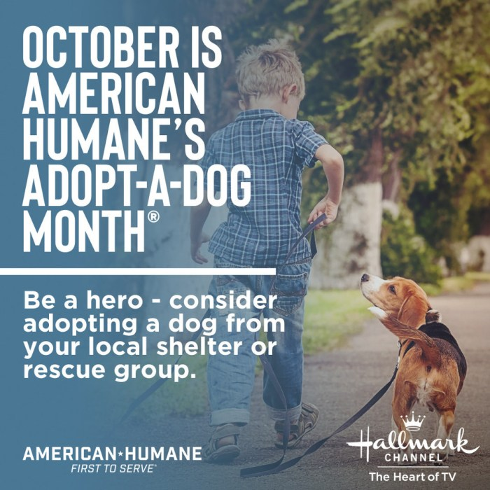 American Humane Society Adopt-A-Dog Month graphic